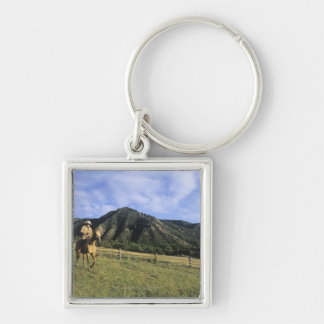 Cowboy riding through field keychain