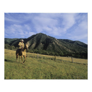 Cowboy riding through field poster