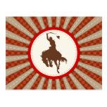 Cowboy Rodeo Red Brown Postcard