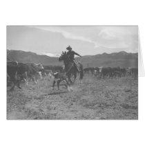 Cowboy roping a calf for spring branding cards