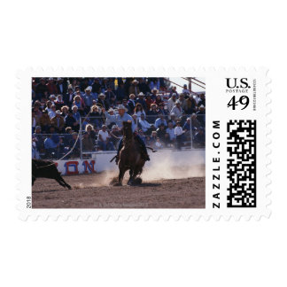 Cowboy Roping Calf at Rodeo Postage