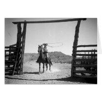 Cowboy roping cards