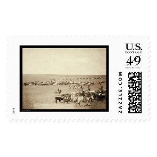 Cowboy Round-Up at Belle Fouche SD 1887 Stamps