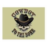 Cowboy Skull Post Cards