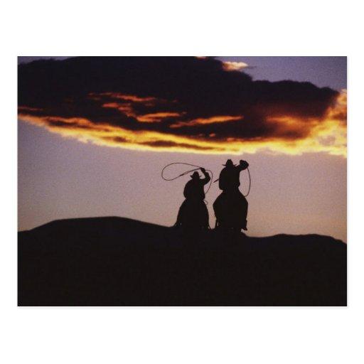 Cowboy Team with Lassoes Postcard