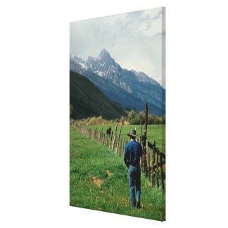 Cowboy walking along fenced pasture Teton Range Canvas Print