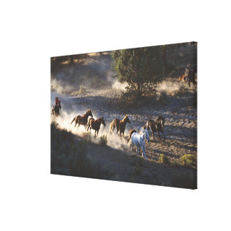 Cowboy with herd of horses canvas print