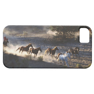 Cowboy with herd of horses iPhone SE/5/5s case