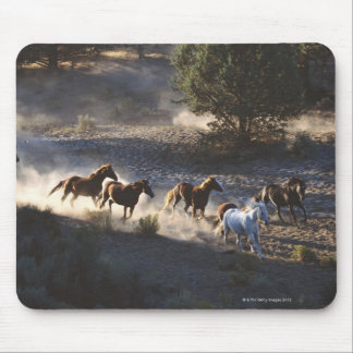 Cowboy with herd of horses mouse pad