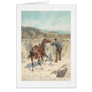 Cowboy with horse in Arroyo... (1324) Card