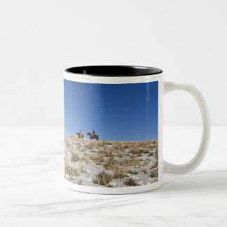 Cowboy with horses on the range on The Hideout Mugs