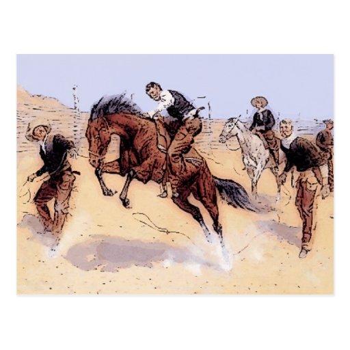 Cowboys - Cowboy Breaking Horse Postcard