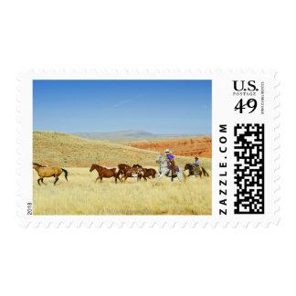 Cowboys herding horses postage stamp