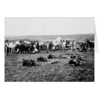 Cowboys Hobbling Horses: 1906 Card