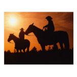 cowboys on horses postcard