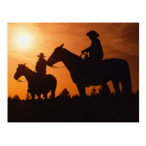 cowboys on horses postcard