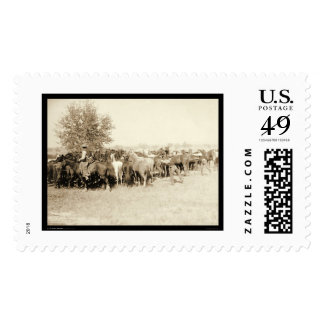 Cowboys Roping a Herd of Horses SD 1887 Stamp