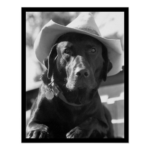 Antique Black and White cowboy dog from cowboy posters