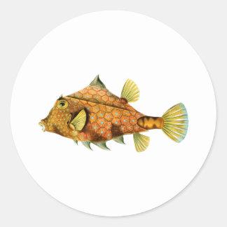 Cowfish del casco pegatina redonda