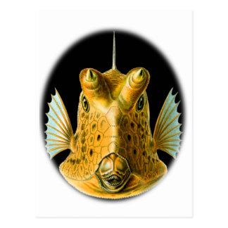 Cowfish Largo-de cuernos Postal