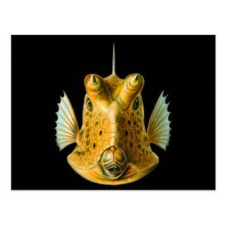 Cowfish Largo-de cuernos Tarjetas Postales