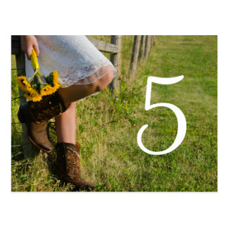 Cowgirl and Sunflower Country Wedding Table Number Post Cards