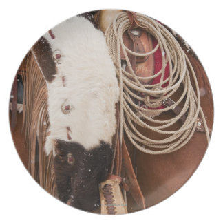 Cowgirl on horse dinner plate