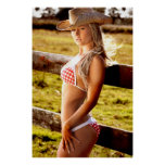 Cowgirl Ranch Poster