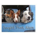 Cowgirl Truck Alarm 16x20 Photograph