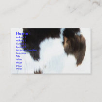 Cowhide Business Card