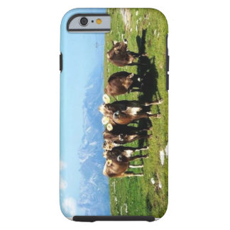 Cowing Around The Alps iPhone 6 case
