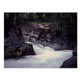 Cowlitz river, near headwaters at Mt Rainier, Wa Postcard
