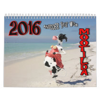 COWmical look at 2016 AnUDDER Year with Mootilda Calendar