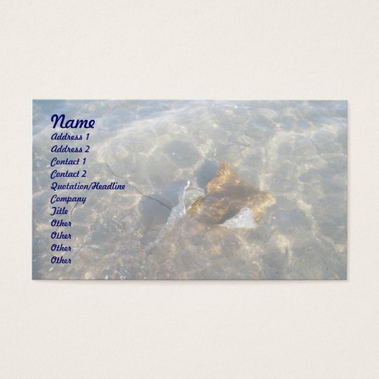 Cownose Stingray OBX Series Business Card