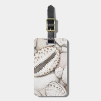 Cowrie & Abalone Shells & Pebbles in Colour Pencil Bag Tag