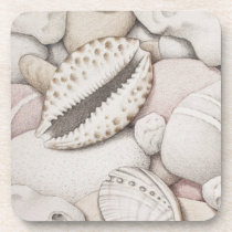 Cowrie & Abalone Shells & Pebbles Plastic Coasters