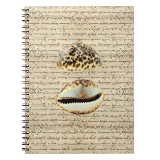 Cowrie shells note book