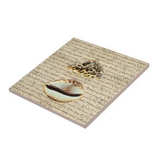 Cowrie shells tile