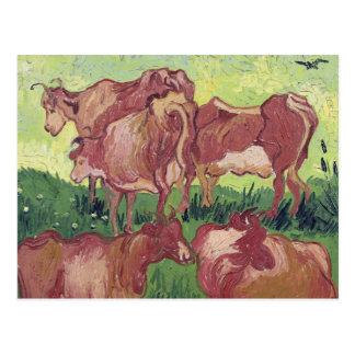 Cows, 1890 postcard