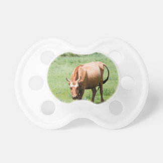 cows and bulls pacifier