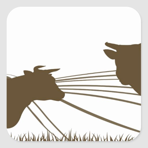 Cows and Farm Rolling Hills Landscape Square Sticker