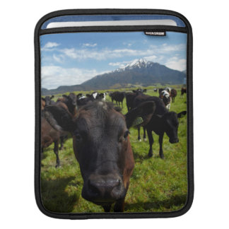 Cows and Mt Somers Sleeve For iPads