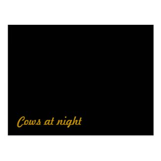 Cows at night postcard