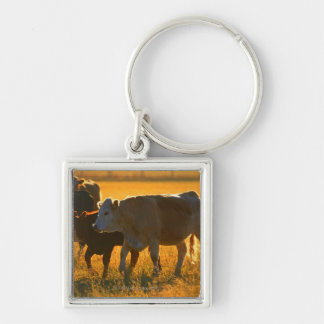 Cows at pasture 2 keychain