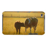 Cows at pasture barely there iPod cover