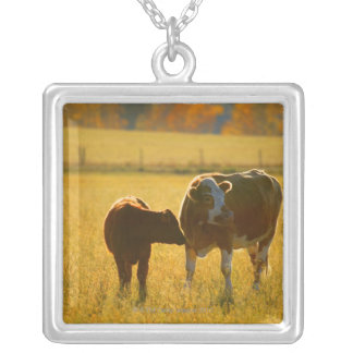 Cows at pasture silver plated necklace