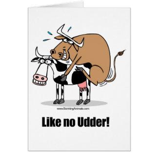 cows boinking card