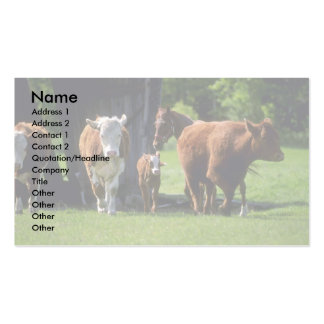 Cows Business Card Template
