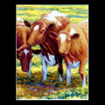 Cows Dairy Cow in Pasture Field Painting Picture Postcard