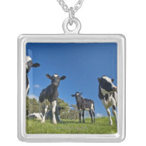 Cows feeding on pasture silver plated necklace